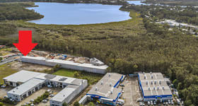 Showrooms / Bulky Goods commercial property for lease at 42/64 Gateway Drive Noosaville QLD 4566