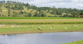 Rural / Farming commercial property sold at 2351 Clarence Way Upper Copmanhurst NSW 2460