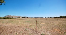 Development / Land commercial property for sale at Lot 251 Albertson Road Barnawartha North VIC 3691