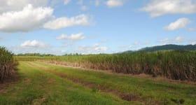 Rural / Farming commercial property for sale at Warrubullen Road Warrubullen QLD 4871