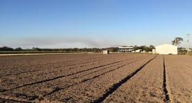 Rural / Farming commercial property sold at 82 Coes Road South Kolan QLD 4670