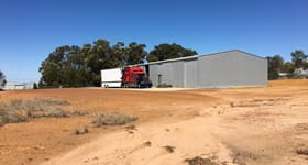 Factory, Warehouse & Industrial commercial property for sale at 12 Stewart Road Narrogin WA 6312