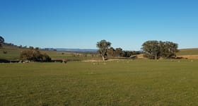 Rural / Farming commercial property sold at Claybraes 200 Wheel of Fortune Road Wagga Wagga NSW 2650