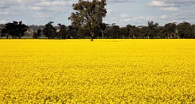 Rural / Farming commercial property sold at 125 Glaisnock Road Berthong NSW 2594