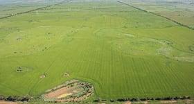 Rural / Farming commercial property sold at Quandong VIC 3030