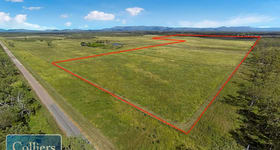 Rural / Farming commercial property for sale at 86 Webb Road Majors Creek QLD 4816