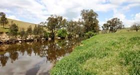 Rural / Farming commercial property sold at 2052 Kenyu Road Boorowa NSW 2586