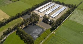Rural / Farming commercial property for sale at DMD Farm 615 Bunyip-Modella Road Iona VIC 3815