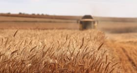 Rural / Farming commercial property for sale at Merrondale Lane Tabbita NSW 2652