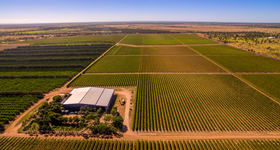 Rural / Farming commercial property for sale at Cordoma Farms Gregory Highway Emerald VIC 3782