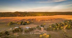 Rural / Farming commercial property sold at Dooloogarah Carnarvon National Park Road Injune QLD 4454