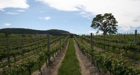 Rural / Farming commercial property sold at Domain Day Vineyard Lot 349 Springton Road Williamstown SA 5351