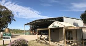 Rural / Farming commercial property for sale at Meningie Fodder 4795 Princes Highway Meningie SA 5264