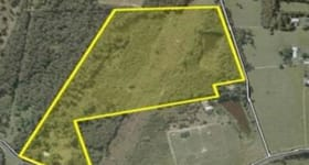 Rural / Farming commercial property for sale at 537 Bellmere Road Bellmere QLD 4510