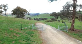 Rural / Farming commercial property for sale at 656 Rockley Rd Georges Plains NSW 2795