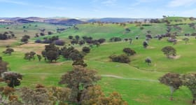 Rural / Farming commercial property for sale at 1120 Rockley Road Cow Flat NSW 2795
