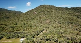Rural / Farming commercial property sold at Pine Creek Road East Trinity QLD 4871
