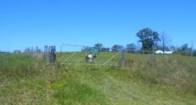 Rural / Farming commercial property for sale at Tuckurimba NSW 2480