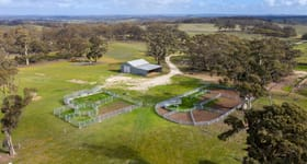 Rural / Farming commercial property for sale at Red Creek 1 Keyneton Road Keyneton SA 5353