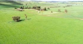 Rural / Farming commercial property sold at 1085 Berthong Road Berthong NSW 2594