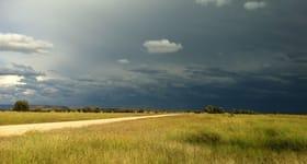 "Rural / Farming commercial property for sale at ""Burngrove"" Tolmies Road Comet QLD 4702"
