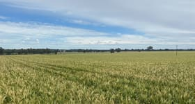 Rural / Farming commercial property sold at 2172 Osborne Yerong Creek Road Yerong Creek NSW 2642