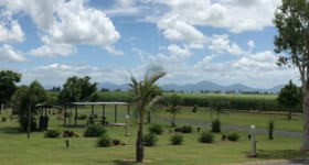 Hotel, Motel, Pub & Leisure commercial property for sale at 13067 Bruce Hwy Myrtlevale QLD 4800