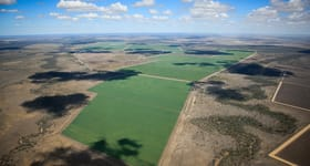 Cropping commercial property sold at St George QLD 4487