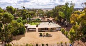 Rural / Farming commercial property for sale at 111 Oates Road Kangaroo Flat SA 5118