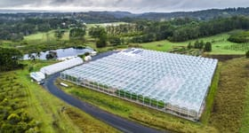 Horticulture commercial property sold at 368 Fredericks Road Caniaba NSW 2480