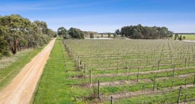 Viticulture commercial property sold at 880 Winchelsea-Deans Marsh Road Winchelsea South VIC 3241