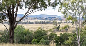 Rural / Farming commercial property for sale at Gayndah Cattle Country/232 Pile Gully Road Pile Gully QLD 4625