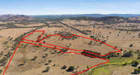 Rural / Farming commercial property sold at Lot 41 Frederic Street Road Leneva VIC 3691