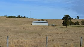 Rural / Farming commercial property for sale at 38 Border Road Killarney QLD 4373