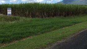 Rural / Farming commercial property for sale at 101 - 107 Midgenoo Feluga Rd Feluga QLD 4854