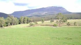 Rural / Farming commercial property for sale at 880 Beulah Road Beulah TAS 7306