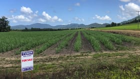 Rural / Farming commercial property for sale at Crn Friday Pocket Road And Dixon Road Friday Pocket QLD 4855