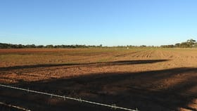 Rural / Farming commercial property for sale at Lot 1 Sturt Highway Balranald NSW 2715