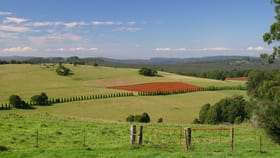 Rural / Farming commercial property sold at 375 Pearsons Lane Robertson NSW 2577