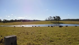 Rural / Farming commercial property sold at Beaudesert QLD 4285
