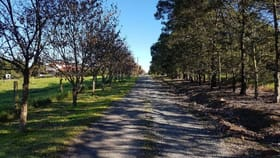 Rural / Farming commercial property for sale at Tuerong VIC 3915