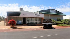 Rural / Farming commercial property for lease at 49 Fenton Place Wongan Hills WA 6603
