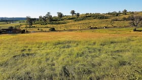 Rural / Farming commercial property for lease at 75 Burragorang Road Mount Hunter NSW 2570