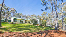 Rural / Farming commercial property for lease at 171 Marked Tree Road Gundaroo NSW 2620