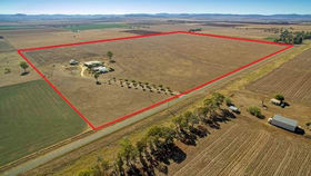 Rural / Farming commercial property for sale at 177 Wiedman Road Clifton QLD 4361