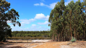 Rural / Farming commercial property for sale at Albany WA 6330