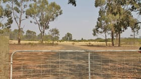 Rural / Farming commercial property for sale at Lot 8 Chamberlain Road Redcastle VIC 3523