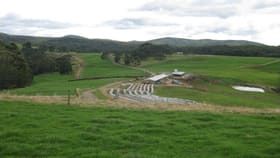 Rural / Farming commercial property for sale at 1169 Lapoinya Road Milabena TAS 7325