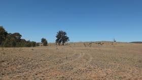 Rural / Farming commercial property for sale at CA 2 Landsborough Road Landsborough VIC 3384