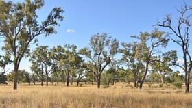 Rural / Farming commercial property sold at 40565 Landsborough Highway Barcaldine QLD 4725